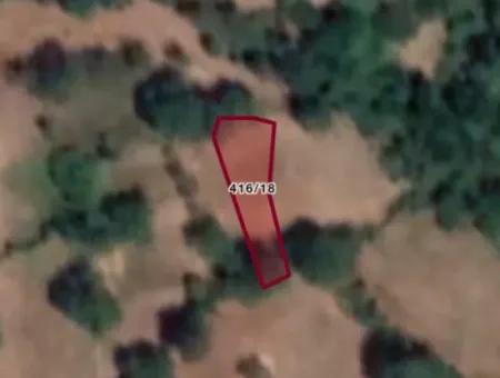 Marmaris Söğüt Köyünde 209 M2 Arsa Alana 42 M2 Arsa Bedava